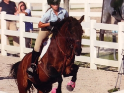 new_spirit_farm_horses35