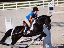 new_spirit_farm_horses36