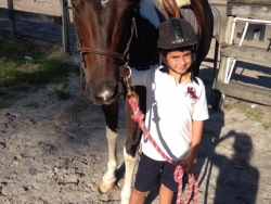 new_spirit_farm_horses37