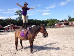 new_spirit_farm_horses48