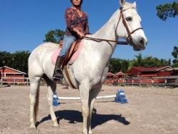new_spirit_farm_horses52