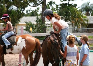 new_spirit_farm_horses14