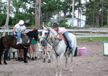 new_spirit_farm_horses23