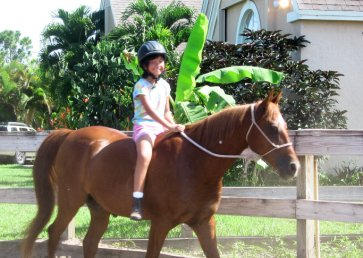 new_spirit_farm_horses25