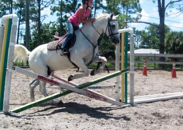 new_spirit_farm_horses31