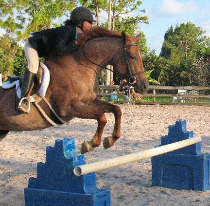 new_spirit_farm_horses45
