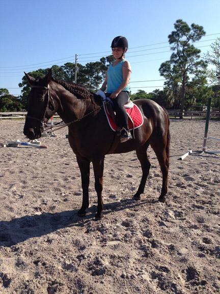 new_spirit_farm_horses51